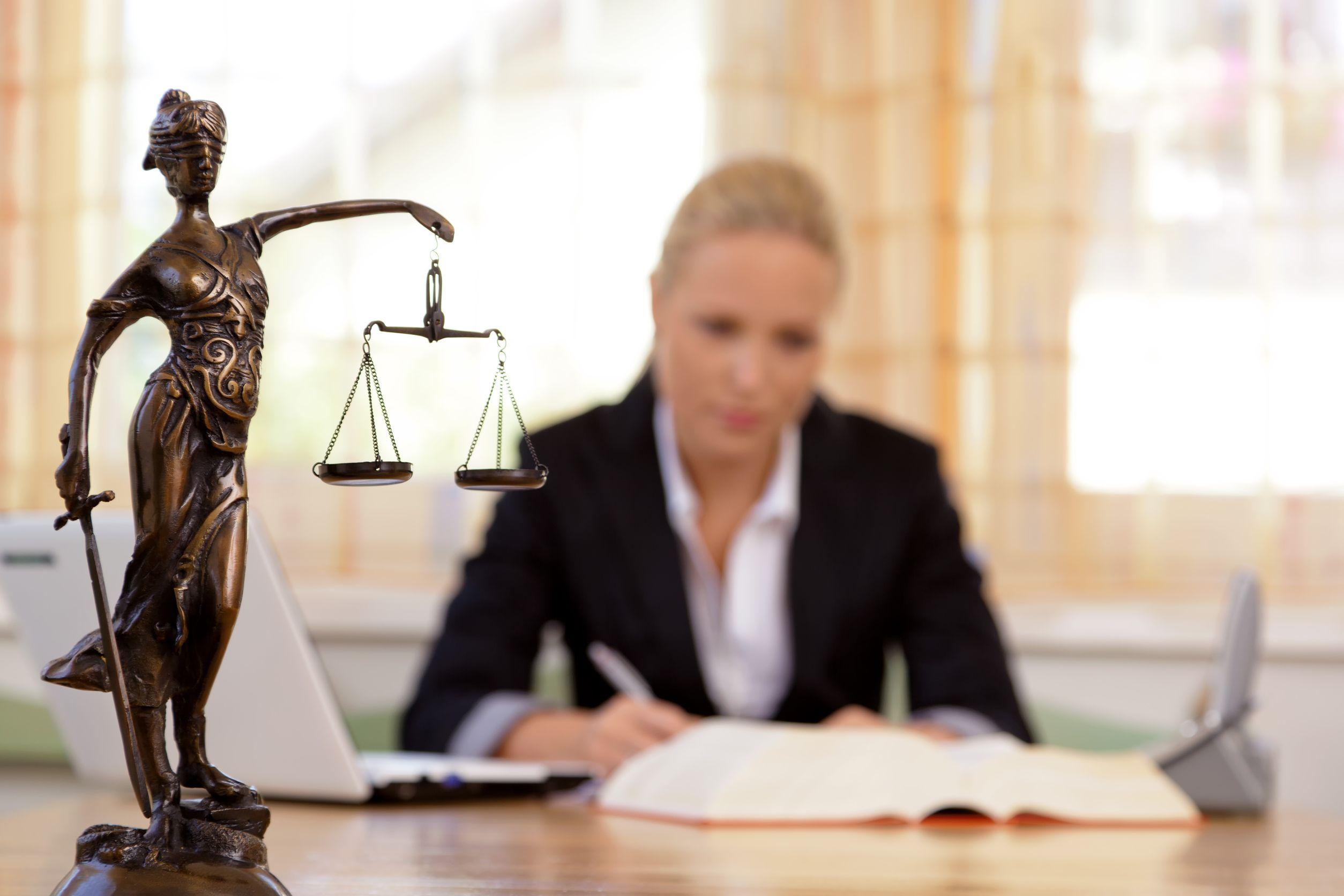 prawnik amator